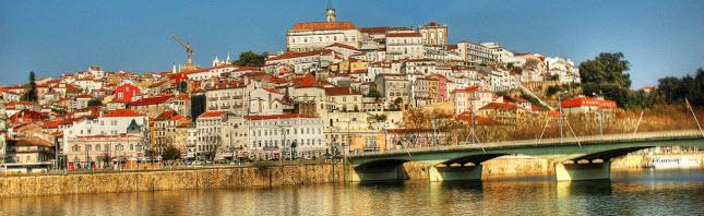 Coimbra: as seguradoras