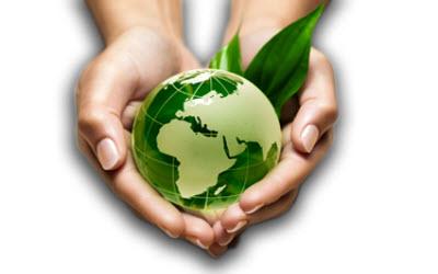 AXA promove responsabilidade ambiental