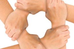 responsabilização social nos seguros