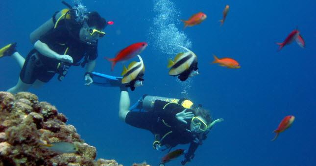 seguro de mergulho