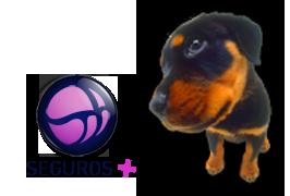 seguros para animais de estimação